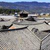 Donglianhua-Yunnan-China