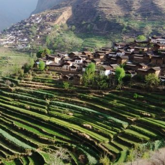 circuit_trek-montagne-dragon-jade-lijiang-shangri-la-12