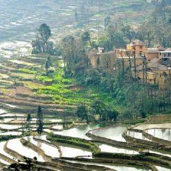 Jingkou Village